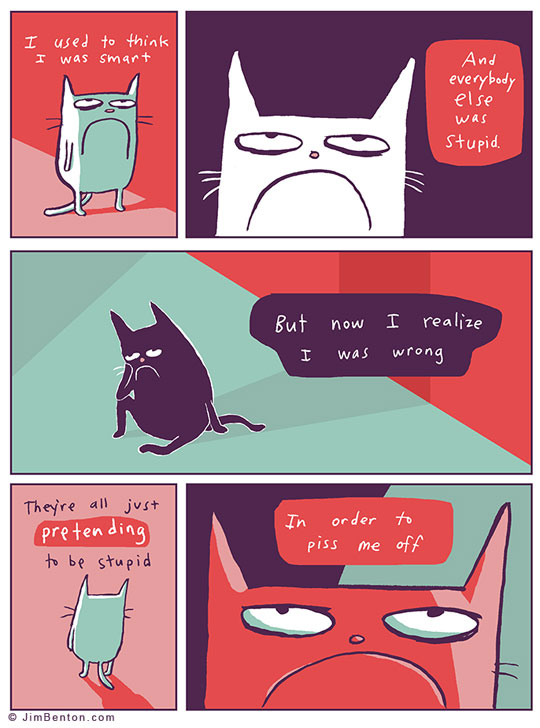cool-webcomic-cat-angry.jpg